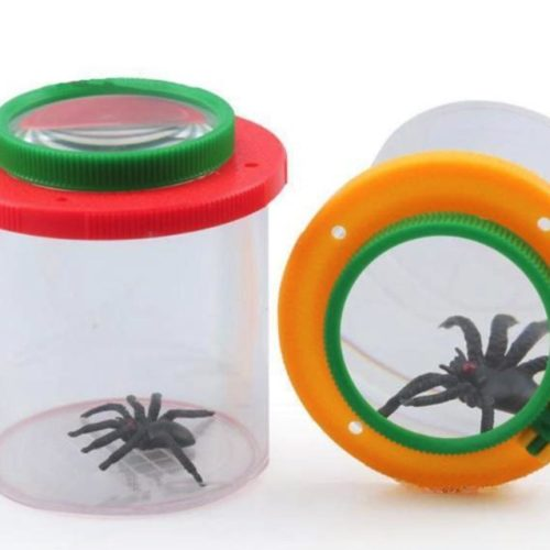 insect magnifying viewer