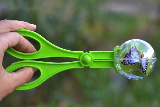 Insect scissor catcher